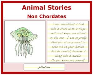 Zoology: Animal Stories