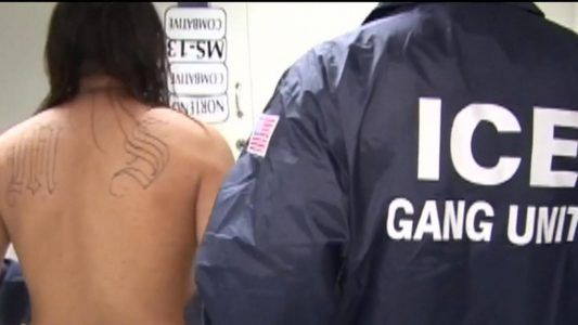U.S. New York officials declare war on deadly MS-13 street gang #news #alternativenews