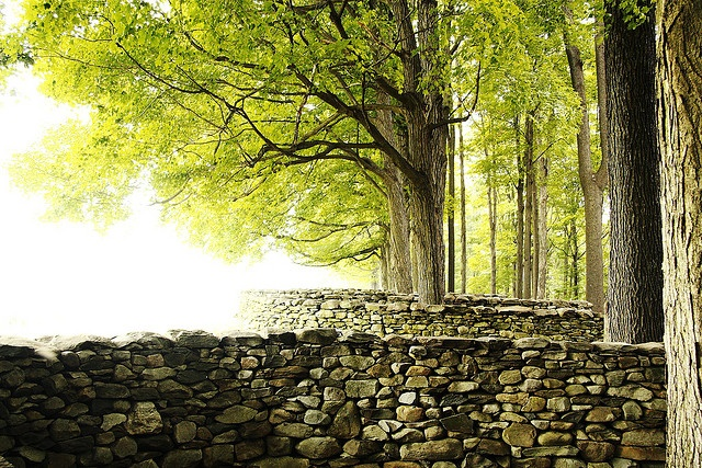 Storm King Wall - Andy Goldsworthy by jmenard48, via Flickr