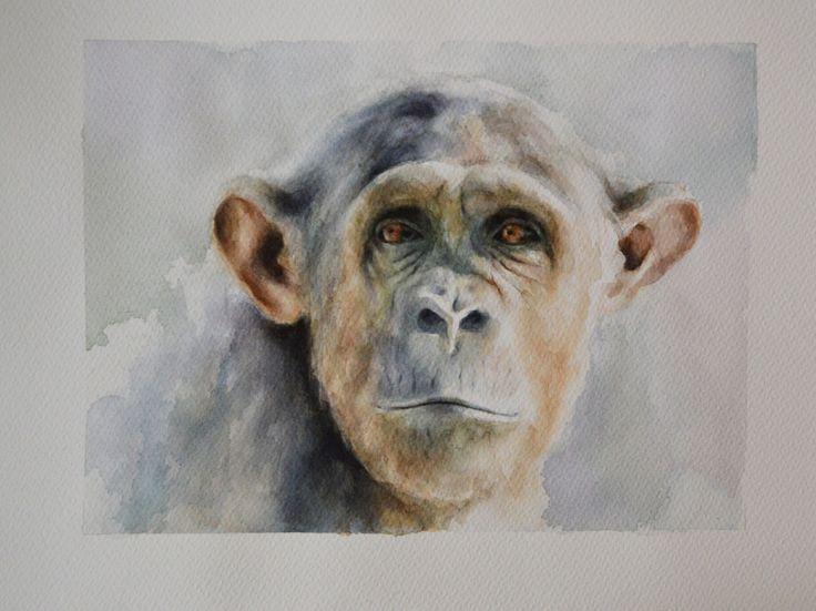 Watercolour 30x40 cm