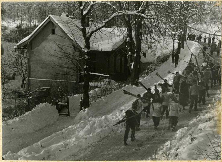 Normafa. Síelők, a '30-as-'40-es években, ismeretlen szerző felvétele