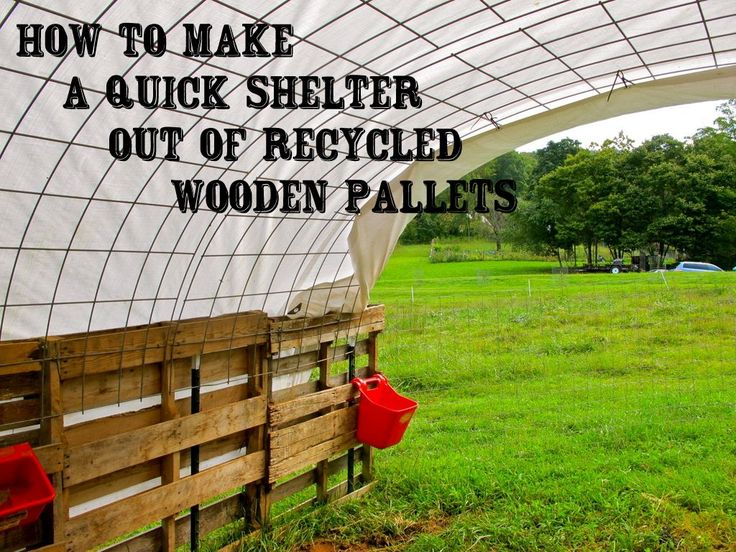 2b944e60c460a6dd601069a0bf0a7df3--pallet-ideas-pallet-projects Pallet Lean Greenhouse Plans on pallet playhouse plans, pallet hutch plans, pallet gardening plans, pallet dresser plans, pallet deck plans, pallet fireplace plans, pallet planter plans, pallet fence plans, pallet shelf plans, pallet lamp plans, pallet gate plans, pallet shed, pallet swing plans, pallet pool plans, pallet bench plans, pallet trunk plans, pallet chest plans, pallet cabinet plans, pallet gazebo plans, pallet storage plans,