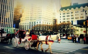 Roaming New York on a horse carriage is sublime.