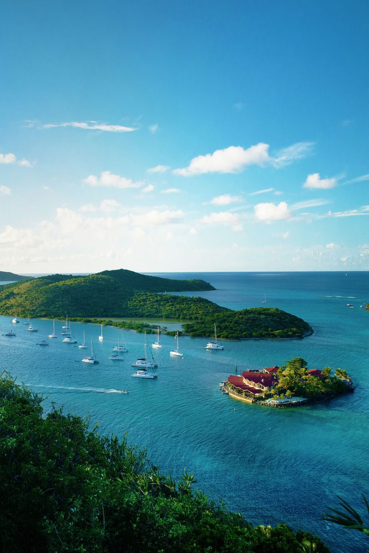 The British Virgin Islands are a fabulous archipelago that offers some of the best wildlife and ocean views imaginable. #LiveIntrepid