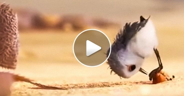 Pixar Has Released aNew Animated Movie, and It's Way Too Cute! But itAlso Has soMuch Meaning
