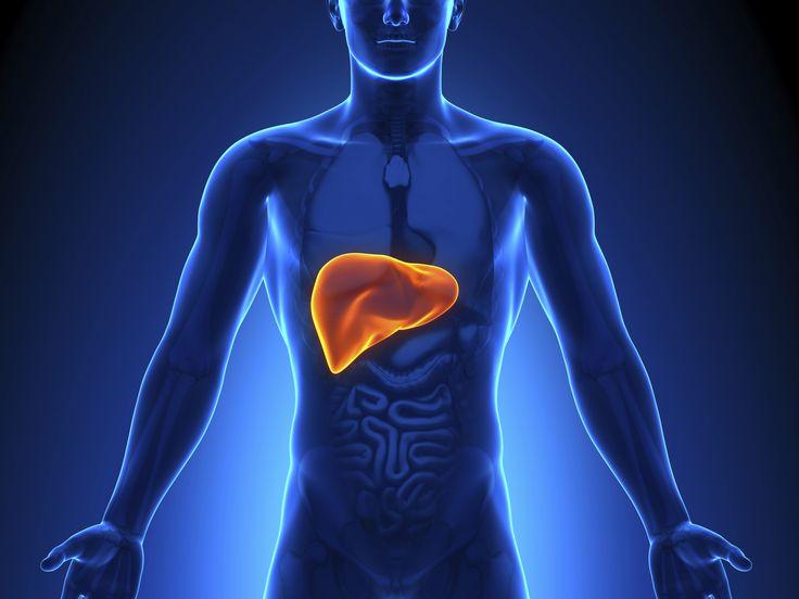 Paleo diet to treat Fatty Liver Disease