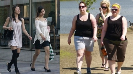 Anorexia vs. obesity ????   The Human Body   Pinterest  Obese Vs Anorexic