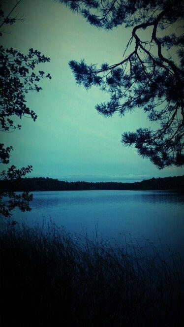 Borsökna sjön