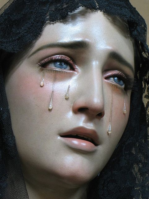 The Seven Sorrows of Our Lady    1. The Prophecy of Simeon   2. The Flight into Egypt .  3. The Loss of Jesus in the Temple   4. Mary meets Jesus Carrying the Cross   5. The Crucifixion  6. Mary Receives the Dead Body of Her Son  7. The Burial of Her Son and Closing of the Tomb.