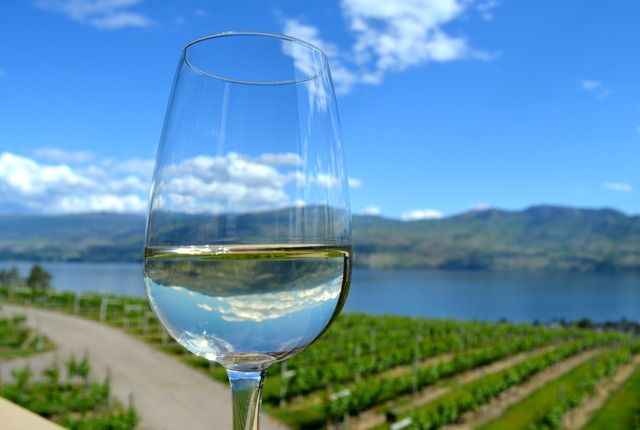 """""""You may not know but British Columbia has a wine region that is a worthy rival of Napa and Tuscany. Mission Hill Winery is one of the stellar estates that not only has some of the best wine in Canada but also serves the best food with matching views of Lake Okanagan.  ... enjoy the view. In August there is a diner en blanc event and all summer long there are concert performances you can take in on the terraced grass ampitheatre."""""""