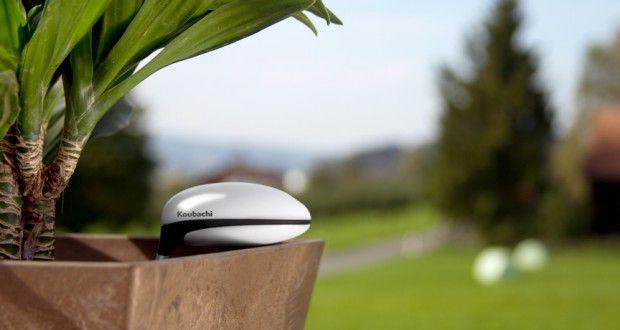 Le Plant Sensor de Koubachi fait parler vos plantes