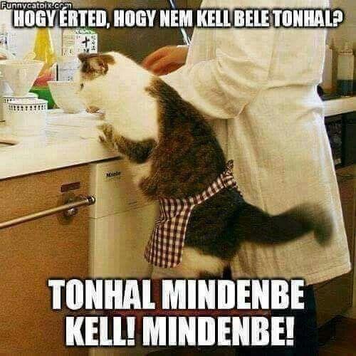 Ohh..I love tonhal!!!!