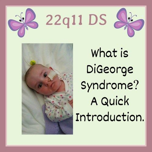 It's been a difficult 12 days. It was 10 days ago that we received the news that Rainbow has DiGeorge Syndrome. We were completely stunned. We had never heard of DiGeorge Syndrome…