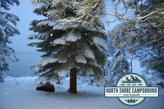 Come visit the North Shore Campground and #RVPark located in #NorthernCalifornia in Plumas county in a town called Lake Almanor - just minutes away from Chester. We have a large variety of #cabinrentals available for winter season. Don't let #winter stop you from camping. Our #cabins are a perfect get-a-way. Go #camping and explore the great #outdoors of the #NorthState. Visit northshorecampground.com or email info@northshorecampground.com to find rental availabilities!