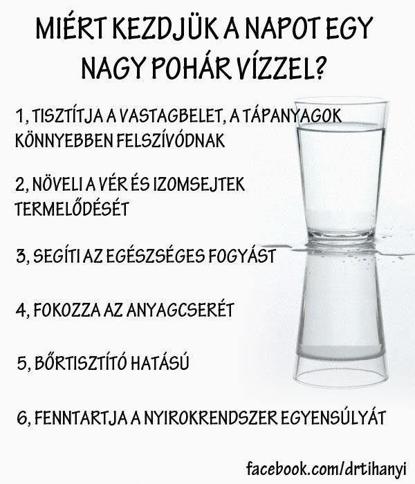 Miért kezdjük a napot egy nagy pohár vízzel? | Socialhealth
