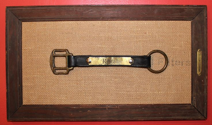 framed cheek piece from old horse halter