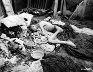 Afbeeldingsresultaat voor Croato- German concentration camp in Sisak was founded on 3.