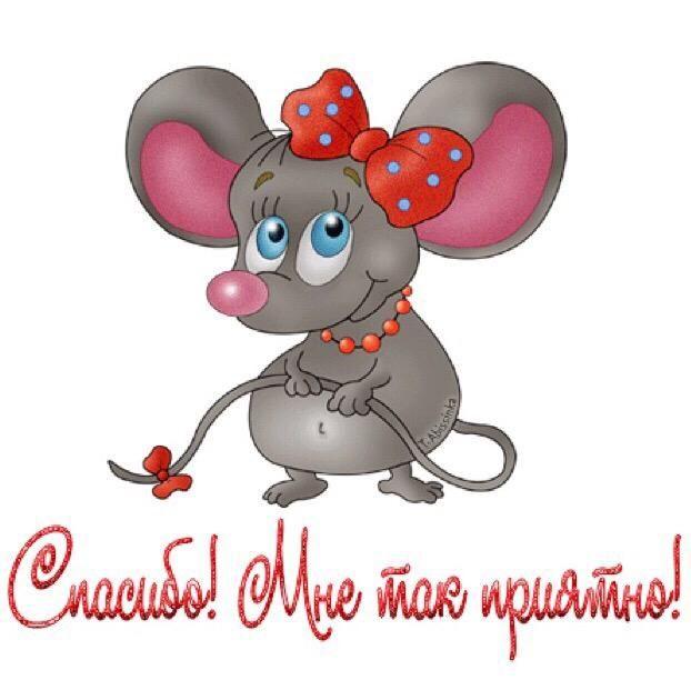 поставьте кастрюлю, картинки и открытки ты моя мышка для отслеживания