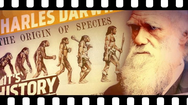 Biography Of Charles Darwin |The life cycle of the greatest people of al...