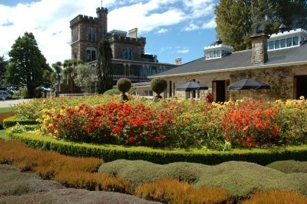 Trovolo - Dunedin #travel #NewZealand #photography #NZ #fun #outdoors #nature #dunedin