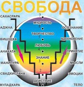 Т. Гинзбург о конференции «Психология и Духовность» Индия, январь 2008. Духовный опыт по трансперсональной психологии. Эзотерика и духовное развитие.
