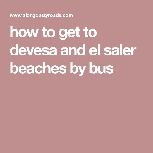 how to get to devesa and el saler beaches by bus