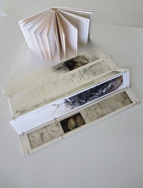 Beautiful collaborative work : Susan Bowers and Fiona Dempster, artists books
