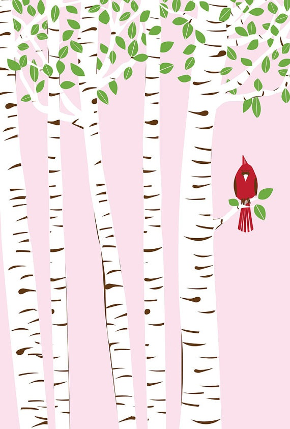 Summer Cardinal & Birch Trees