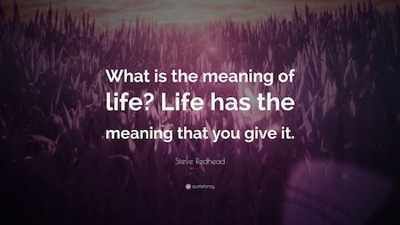 What is the meaning of life?  Life has the meaning that you give it. ~ Steven Redhead ~ #AwakeningYourReality