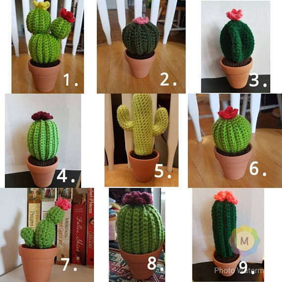 Hey, I found this really awesome Etsy listing at https://www.etsy.com/ca/listing/522251136/set-of-3-crochet-cactus-cactus-family