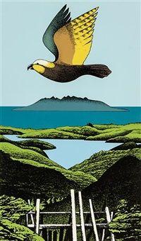 Kaiarara Kaka, Grande Barrière par Don Binney