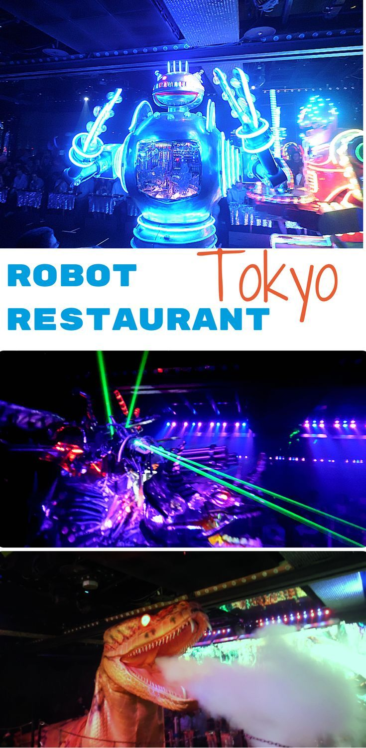 Tokyo Robot Restaurant Review: must do if you're a fan of Camp.
