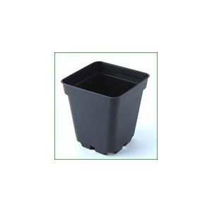 Pot 7x7cm, 0.25L