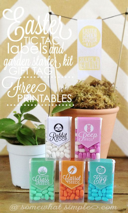 Easter Tic Tac Labels // FREE PRINTABLE!  Fun and unique easter gift idea!