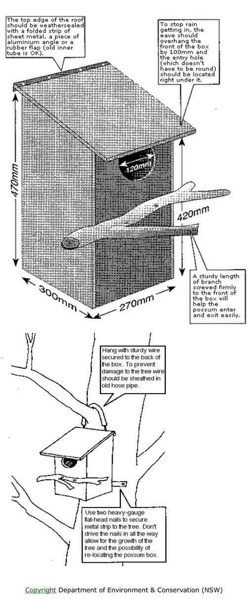 Making a possum box