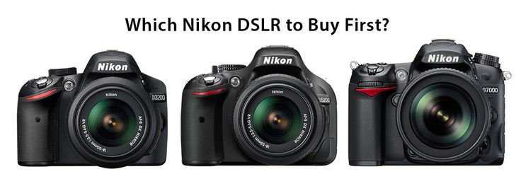 Which Nikon DSLR to Buy First