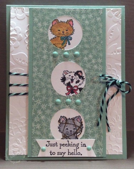 Hi Stampers! My card today is for the Try Stampin' on Tuesday Challenge #283. here is the sketch Here is my card! Come on over and join in on the fun over at Try Stampin' on Tuesday!&nbsp…