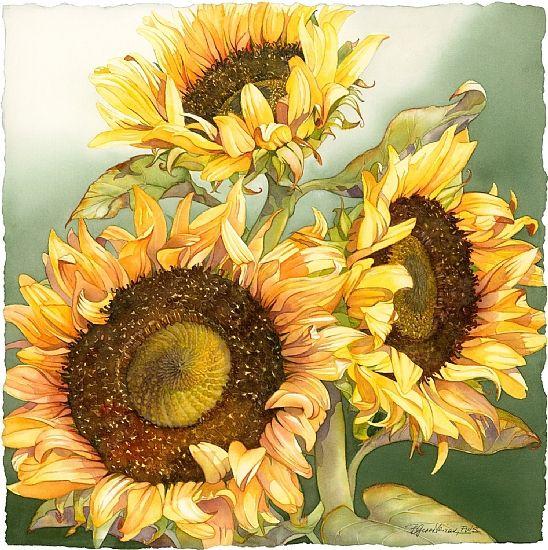 Sherry's Sunflowers by Barbara Groenteman Watercolor ~  x