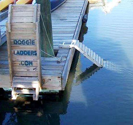 11 Best Dog Dock Ladder Images On Pinterest Ladder