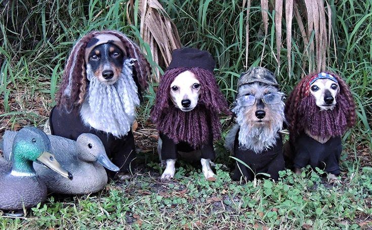 Dox Dynasty! http://www.celebritydachshund.com/2013/10/27/halloweenie-dachshund-costumes-contest/