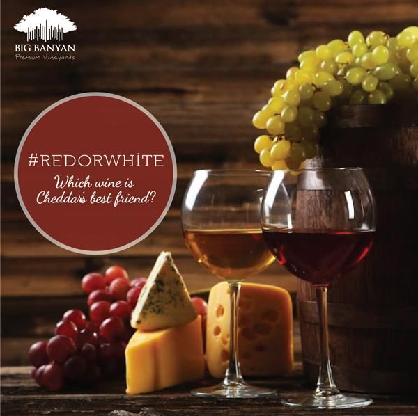 Take a guess. #RedOrWhite, which wine goes with Cheddar?