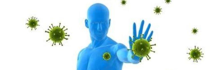 Het is van groot belang dat ons auto immuunsysteem goed werkt om zodoende goed gezond te blijven. Dit kunnen we bevorderen door het juiste voedsel te eten. Voedingsstoffen die je immuunsyste