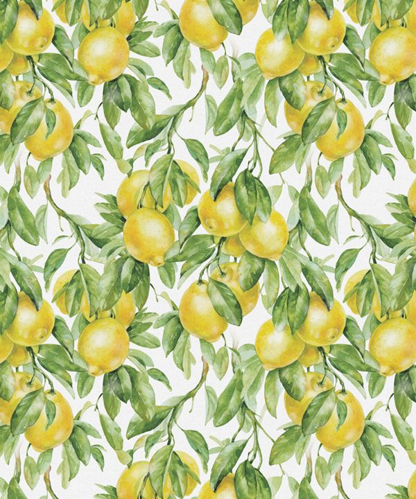 fruit patterns | Part 2 on Behance