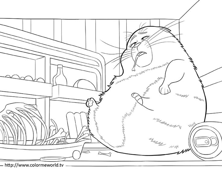 The Secret Life Of Pets Coloring Page