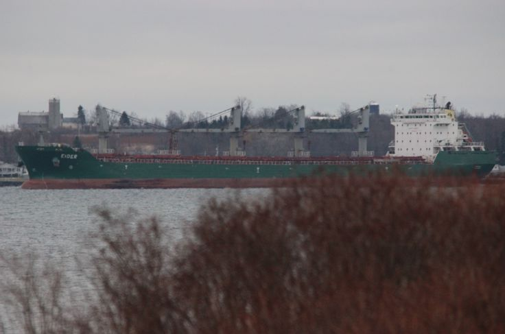 Eider downbound passing Cape Vincent 11:15 , cool, cloudy morn. on the River , stay warm , safe travels