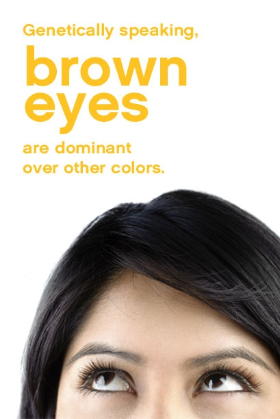 134 best images about Interesting Eye Facts on Pinterest - photo#28