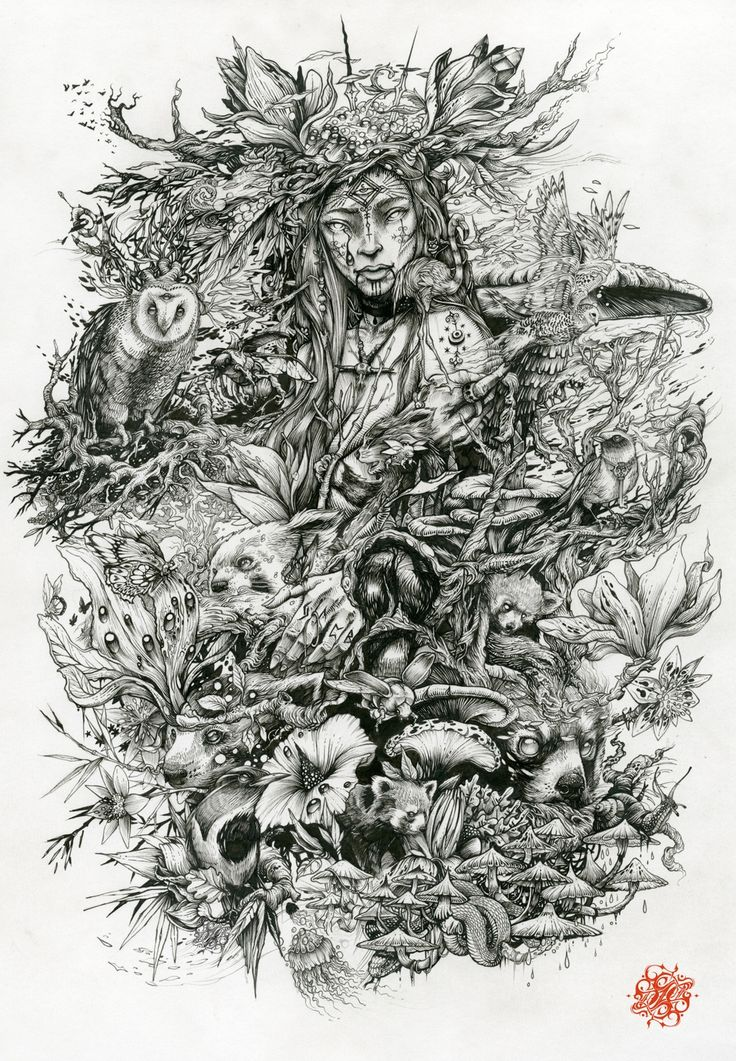 Pan Illustration - Print available from the very talented DZO Olivier.