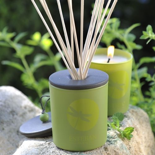 Esteban Paris home perfumes.Sous Les Feuilles decorative scented candle.