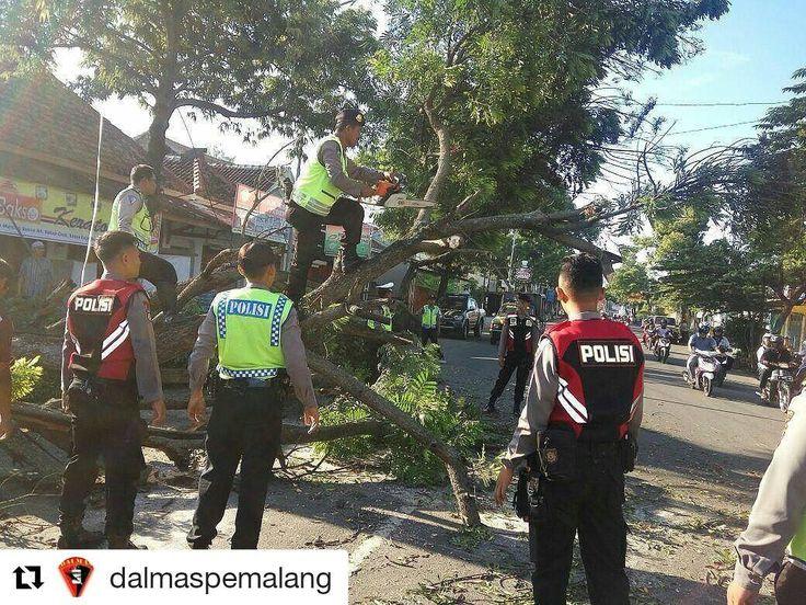 #Repost @dalmaspemalang with @repostapp  Personil dalmas melakukan pemotongan pohon tumbang di jalan Urip Sumoharjo Pelutan Pemalang agar arus lalu lintas lancar  #humaspolrespemalang  #humaspolri #humaspoldajateng  #polisiindonesia  #polisi_indonesia