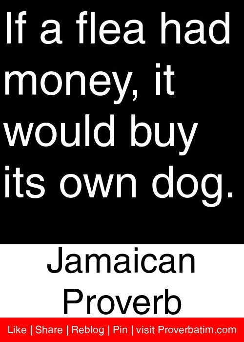 If a flea had money, it would buy its own dog. - Jamaican Proverb #proverbs #quotes